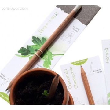 Crayon à planter - Graines aromatiques