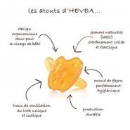 Tétine Physiologique 3 m+ - FLEUR - HEVEA