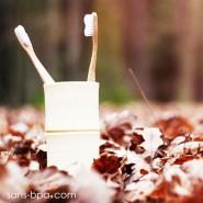 Brosse à dent 100% biodégradable - Eco Bamboo